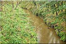 J3673 : The Knock River, Belfast - November 2015(1) by Albert Bridge