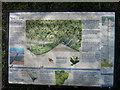 TL6558 : Devil's Dyke information board by Hugh Venables