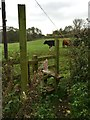 SJ7360 : Stile and footpath off Red Lane by Jonathan Hutchins