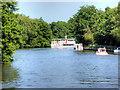 TG3115 : River Bure near to Salhouse by David Dixon