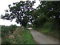 TM1581 : New Road by JThomas