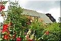 TL4459 : St Giles among the hollyhocks by Tiger