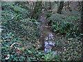 SU0480 : Stream, Teagles Copse, near Tockenham Corner by Vieve Forward