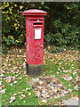 TL1312 : Hatching Green Edward VII Postbox by Adrian Cable