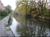 SO8554 : The Worcester and Birmingham Canal by Philip Halling