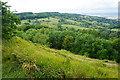 SO9417 : Footpath on the edge of Leckhampton Hill by Bill Boaden