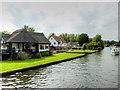 TG3017 : River Bure, Wroxham by David Dixon