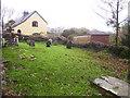 SN0904 : East Williamston - St Elidyr's Churchyard by welshbabe