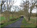 NO6359 : Road, Windyedge by Richard Webb