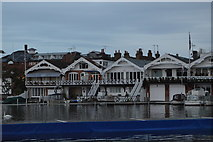 SU7682 : Boathouses across the River Thames by N Chadwick