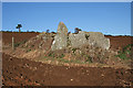NJ5844 : Cairnton Recumbent Stone Circle (4) by Anne Burgess
