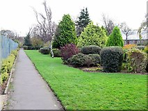 NZ3472 : Souter Park, Monkseaton by Andrew Curtis