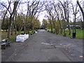 TQ3470 : Park Avenue by Gordon Griffiths