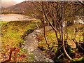 NY3306 : Grasmere, Wyke Gill Beck by David Dixon