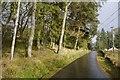NT2714 : B709, Ettrick by Richard Webb