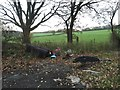 SJ7948 : Halmer End: flytipping on Red Hall Lane by Jonathan Hutchins