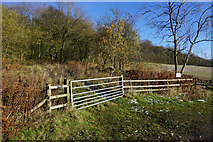SK2566 : Private woodland at Bouns Corner by Bill Boaden