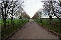 TL8068 : Drive and gateway to Brakey Pin Hall Farm by Bob Jones