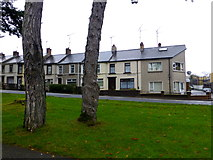 H4573 : Woodside Terrace, Omagh by Kenneth  Allen