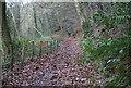 ST1797 : Sirhowy Valley Walk, below B4251, Penmaen by M J Roscoe