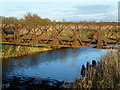 TF3902 : Rusty bridge over Mortons Leam - The Nene Washes by Richard Humphrey