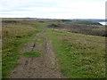 NZ4640 : England Coast Path at Blackhall Rocks by Oliver Dixon