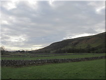 SD9771 : The Dales Way passes through many fields near Kettlewell by steven ruffles