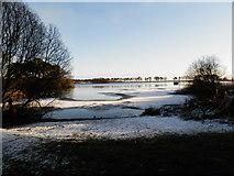 NO5038 : Monikie  Reservoir by Douglas Nelson