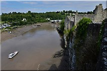 ST5394 : Chepstow Castle: The river Wye from the river cliff by Michael Garlick