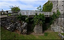 ST5394 : Chepstow Castle: The bridge into the upper barbican by Michael Garlick
