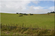 SK2375 : Pasture land by N Chadwick