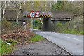 SU9852 : Bridge over Salt Box Road by Alan Hunt