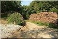SX2458 : Timber stack, Polvean Wood by Derek Harper