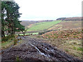 SE5196 : Muddy Track into Upper Ryedale by Mick Garratt