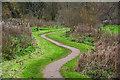 SS8202 : Sandford : Millennium Green by Lewis Clarke