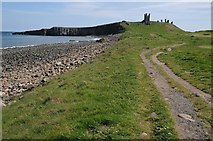 NU2522 : Dunstanburgh Castle viewed from the north-west by Philip Halling