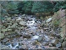J3629 : The Glen River upstream of the Sonny's Bridge by Eric Jones