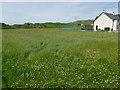 NM2823 : Hay meadow, Iona by Hugh Venables