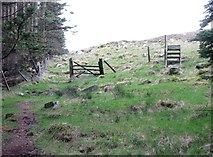 J3629 : Fence gate and stile at the top of the firebreak by Eric Jones