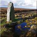 NZ6901 : Millennium Stone, Danby High Moor by Ian Taylor