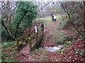 SO3319 : Croesi Pompren / Crossing Footbridge by Alan Richards