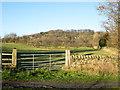 NZ0737 : Gate into field near Waskerley Beck by Trevor Littlewood