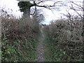 SD5377 : Slape Lane by David Brown