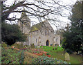 TQ6404 : St Nicholas Church. Pevensey by Paul Gillett