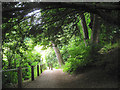 SO1091 : Footpath down to Dolerw Park from Milford Road, Newtown, Powys by Robin Stott