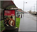 ST3188 : eBay advert on a city centre bus shelter, Newport by Jaggery
