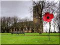 SD7807 : Poppy Outside St Thomas' Church by David Dixon
