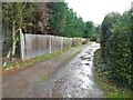 SU9666 : Track to houses off Chobham Road by David Howard