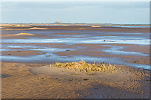 NU1536 : Budle Bay by Ian Capper