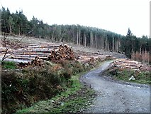 J3630 : Harvesting logs in Donard Wood by Eric Jones